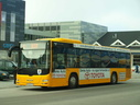 Nuup Bussii 16 (GR60 579)