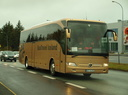 Bus Travel Iceland ([PL] WOT 41282)