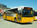 Nuup Bussii 13 (GR49 469)