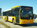 Nuup Bussii 14 (GR60 577)