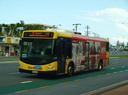 Surfside Buslines 302