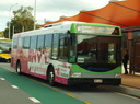Surfside Buslines 476