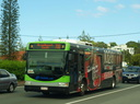 Surfside Buslines 500