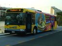 Surfside Buslines 710