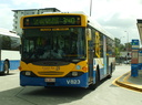 Brisbane Transport  823