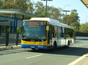 Brisbane Transport 1431