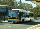Brisbane Transport 1447