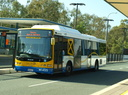 Brisbane Transport 1455